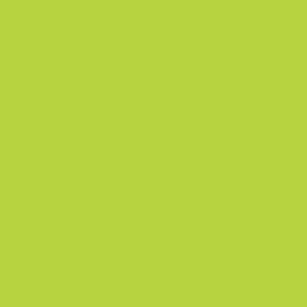 Human Development & Capability Association